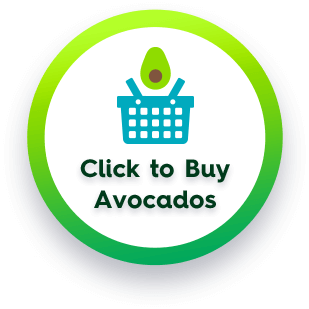 Click To Buy Avocados